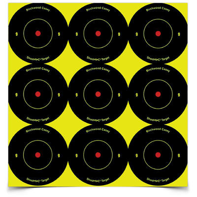 Birchwood Casey Shoot-N-C 2in Bullseye Pasters 9 P
