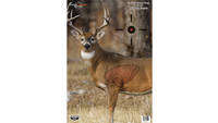Birchwood Casey Pregame Deer 16.5x24 3-Pack [35401